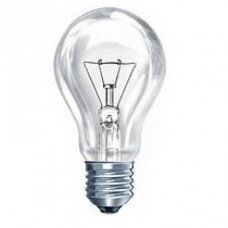 Lemputė  A55 E27 75W