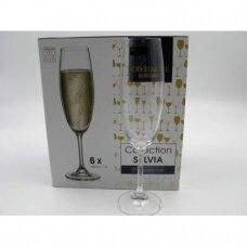 Taurės šampanui  SYLVIA   220ml 6vnt.