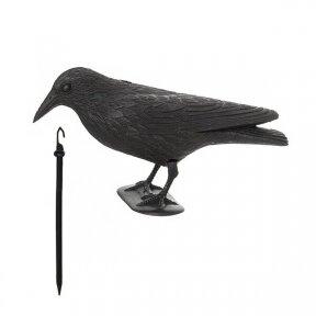 Varna paukščiams baidyti  36x13x18