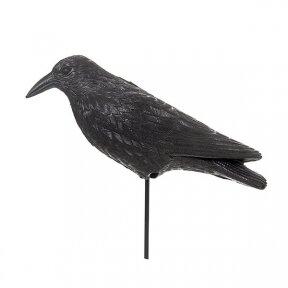 Varna paukščiams baidyti  40x13x20