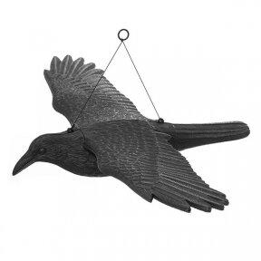 Varna paukščiams baidyti  80x44x12